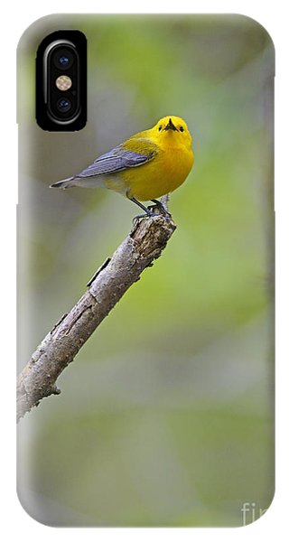 Eye To Eye IPhone Case