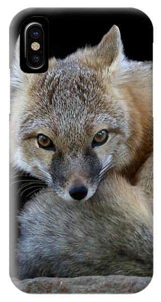 Eyes Of The Fox IPhone Case