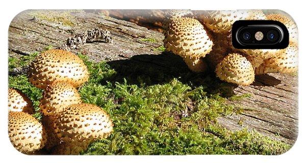 Fabulus Fungi IPhone Case