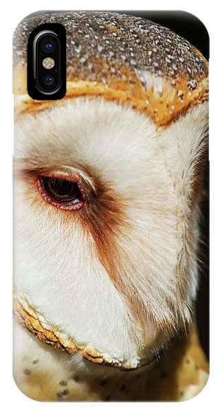 Face Of Athena IPhone Case