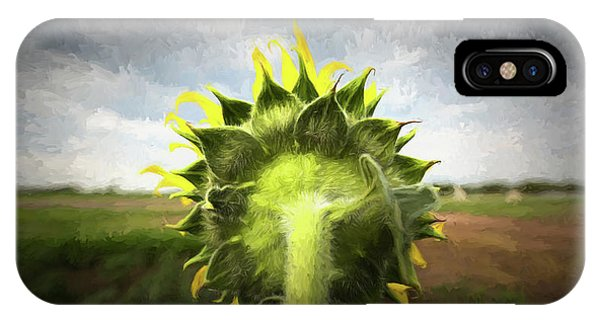 Sunflower Seeds iPhone Case - Facing The Day by Stephen Stookey