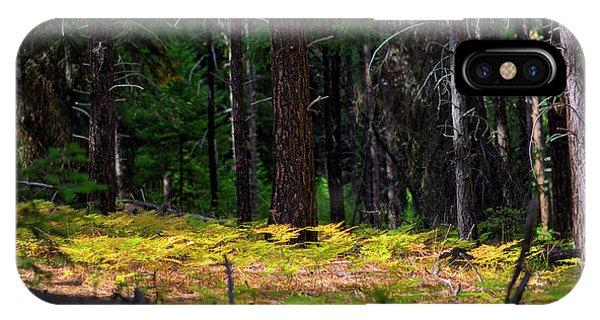 Cascade Mountain Range Fading Ferns IPhone Case