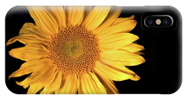 Fading Sunflower IPhone Case