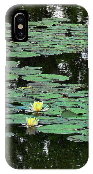 Fairmount Park Lily Pond IPhone Case