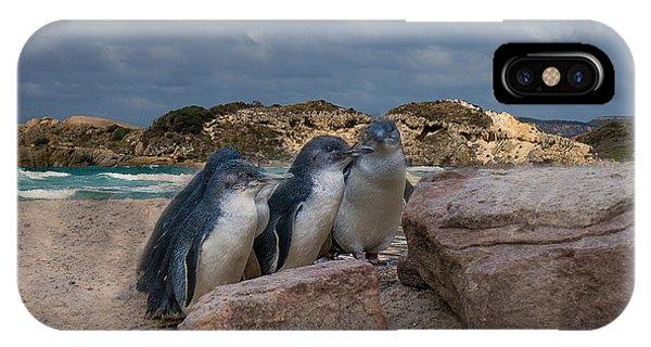 IPhone Case featuring the photograph Fairy Penguins by Elaine Teague