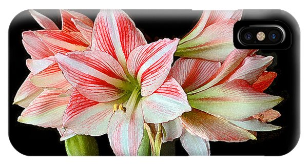 Fairyland Amaryllis  IPhone Case