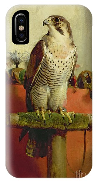 Falcon iPhone Case - Falcon by Sir Edwin Landseer