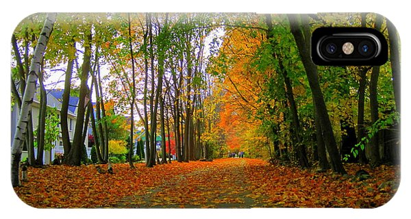 Fall Afternoon On The Rail Trail IPhone Case