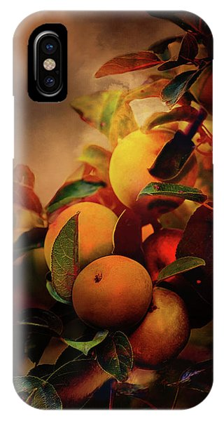 Fall Apples A Living Still Life IPhone Case