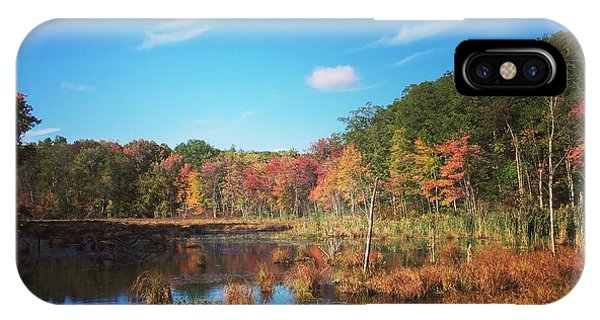 Fall At The Pond IPhone Case