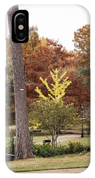 Leave iPhone Case - Fall Color 5528 72 by M K Miller
