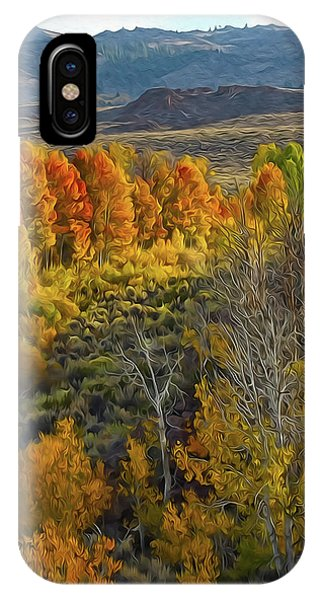Fall Colors At Aspen Canyon IPhone Case
