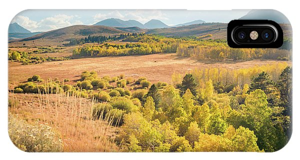 Fall Colors At Dunderberg Meadows IPhone Case