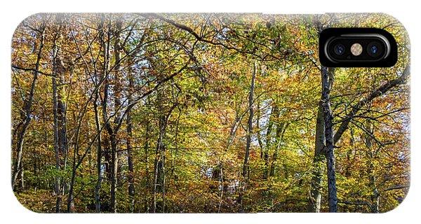Fall Colors Of Rock Creek Park IPhone Case