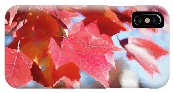 Fall Colors Oil IPhone Case
