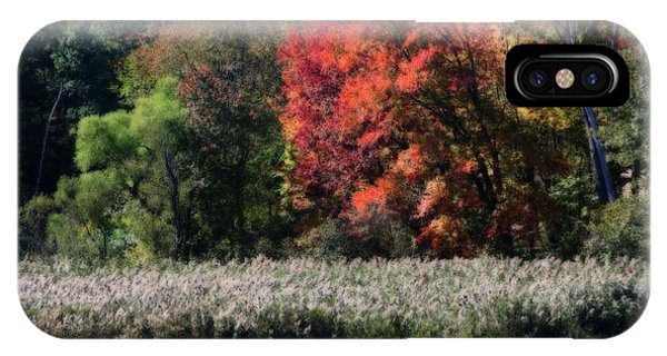 Fall Foliage Marsh IPhone Case