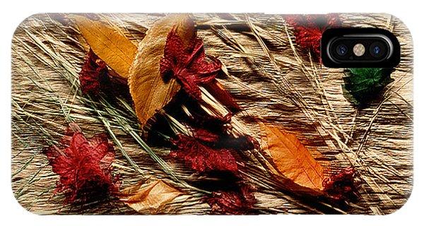 Fall Foliage Still Life IPhone Case