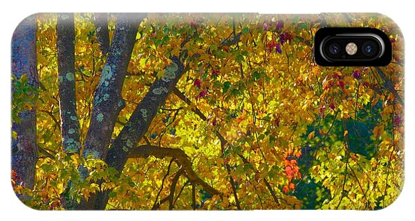 Fall Glory On Route 53 IPhone Case