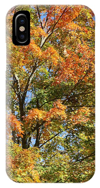 IPhone Case featuring the photograph Fall Gradient by William Selander