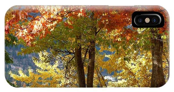 Oyama iPhone Case - Fall In Kaloya Park 4 by Will Borden