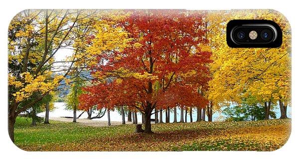 Oyama iPhone Case - Fall In Kaloya Park 5 by Will Borden