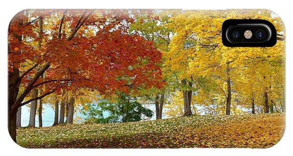 Oyama iPhone Case - Fall In Kaloya Park 9 by Will Borden