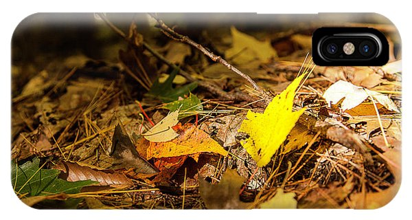 Fall In New Hampshire IPhone Case