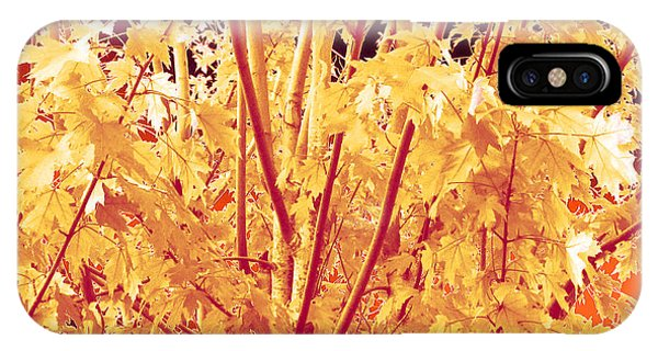 Fall Leaves #1 IPhone Case