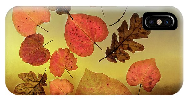 Leave iPhone Case - Fall Leaves #1 by Rebecca Cozart