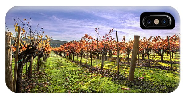 Fall Leaves At The Vineyard IPhone Case
