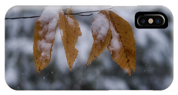 Fall Leaves In Snow IPhone Case