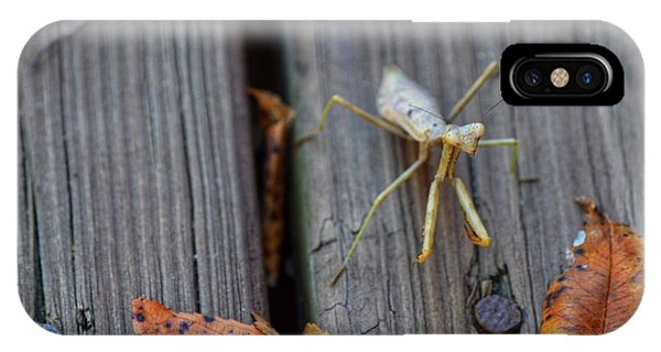 Fall Mantis  IPhone Case