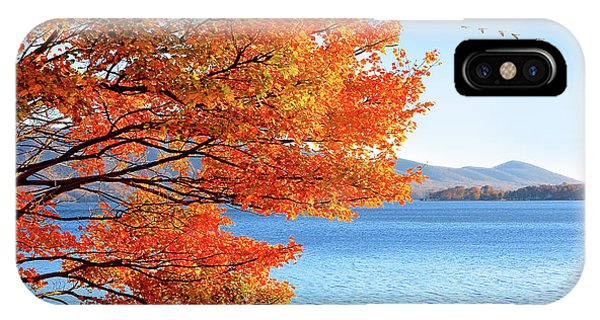 Fall Maple Tree Graces Smith Mountain Lake, Va IPhone Case