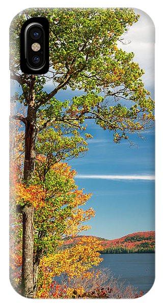IPhone Case featuring the photograph Fall Oak Tree by Elena Elisseeva