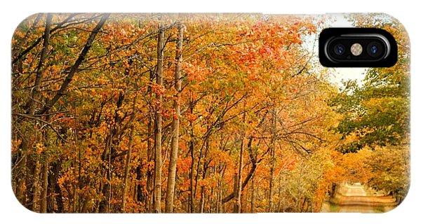 9012 - Fall On Murphy Lake II IPhone Case