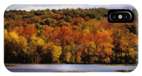 Fall On Springfield Lake IPhone Case