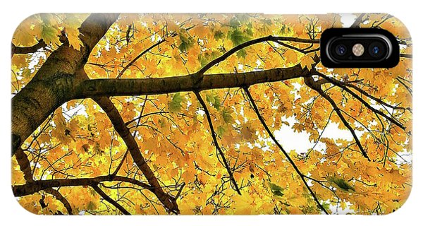Fall On William Street IPhone Case