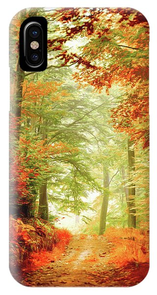 Fall Painting IPhone Case