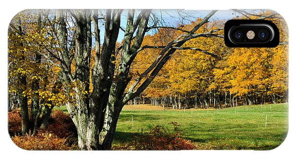 Fall Pasture IPhone Case