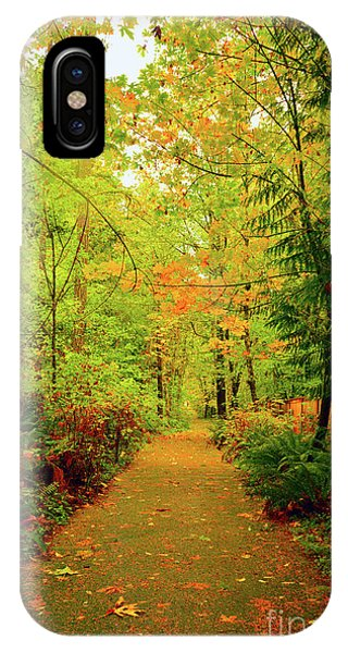 Fall Path Too IPhone Case
