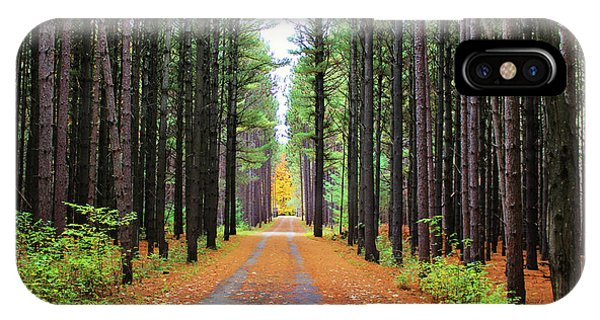 Fall Pines Road IPhone Case