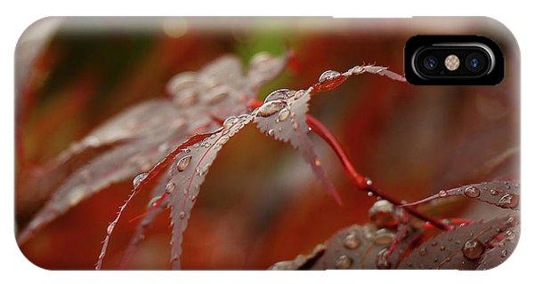 Fall Rain IPhone Case