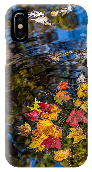 Fall Reflection - Pisgah National Forest IPhone Case