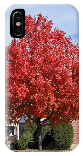 Fall Season IPhone Case