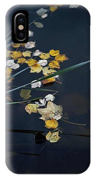 Fall Serenity IPhone Case