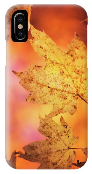 Fall Reveries IPhone Case