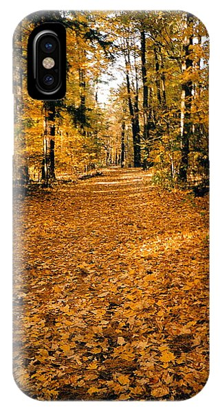 Fall Phone Case by Stephanie Moore