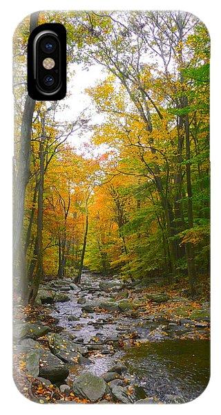 Catoctin Mountain Park iPhone Case - Fall Stream by Joy Buckels
