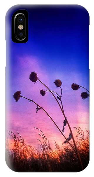 Fall Sunrise Phone Case by Tim Abshire