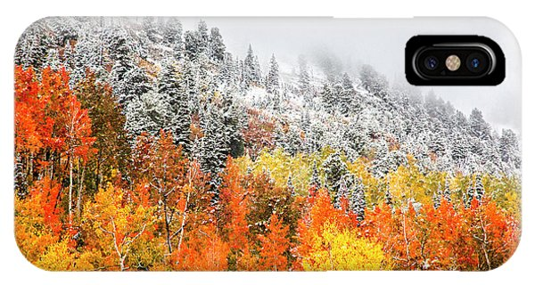 IPhone Case featuring the photograph Fall To Winter Canvas Print, Photographic Print, Art Print, Framed Print, Greeting Card, Iphone Case by David Millenheft